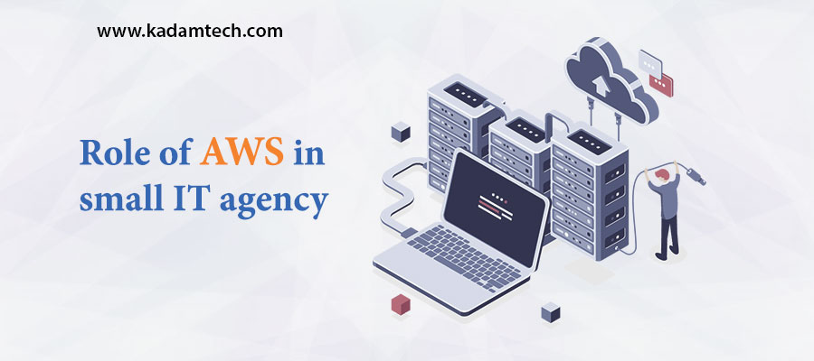 Role of AWS in small IT agency